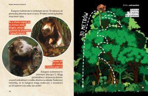 nela-swoja-przygode-na-tej-tajemniczej-wyspie-rozpoczyna-od-podrozy-przez-papuaska-dzungle