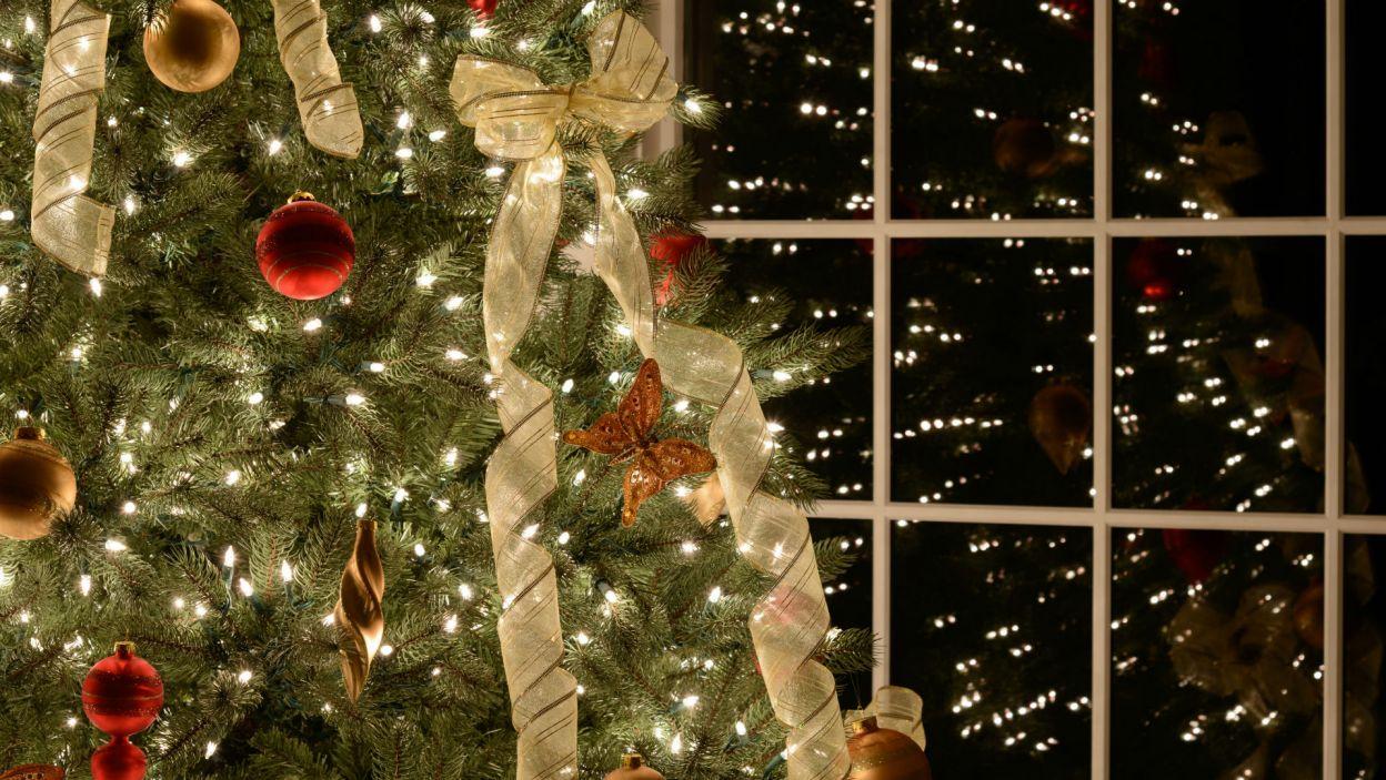 Zwieńczeniem dekorowania może być świąteczna kokarda (Fot. Shutterstock)