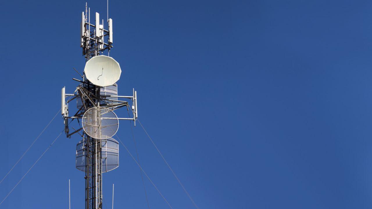Na siłę sygnału mogą mieć wpływ opady atmosferyczne, czy nawet obecność liści na drzewach – przekonują operatorzy (fot. freeimages.com)