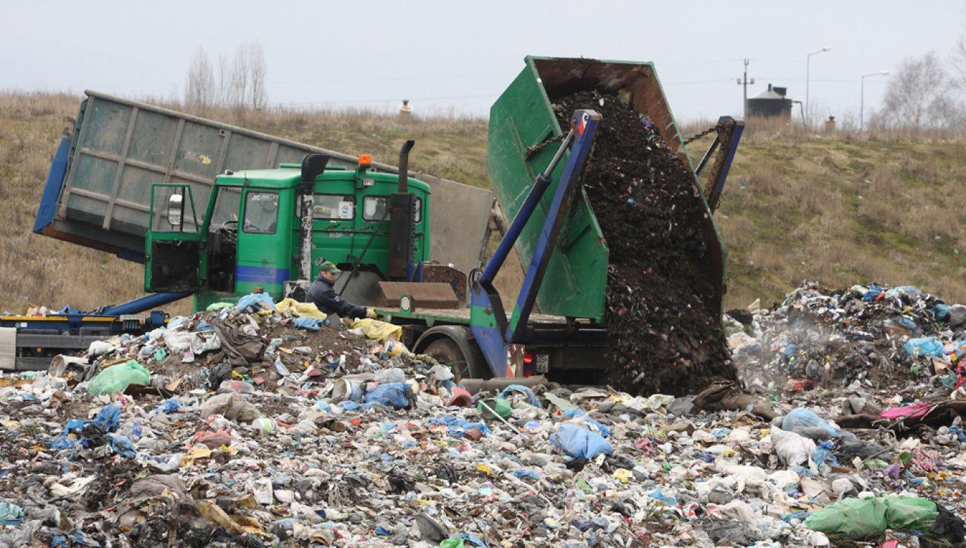 """Jak podaje """"Rz"""" przepisy przejściowe noweli ustawy o utrzymaniu czystości i porządku w gminach nie do końca są jasne(fot. arch PAP /Tomasz Wojtasik)"""