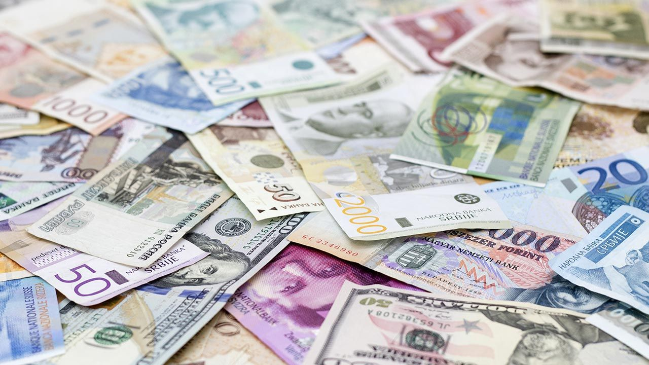 Kursy walut NBP (fot. Shutterstock/goldyg)