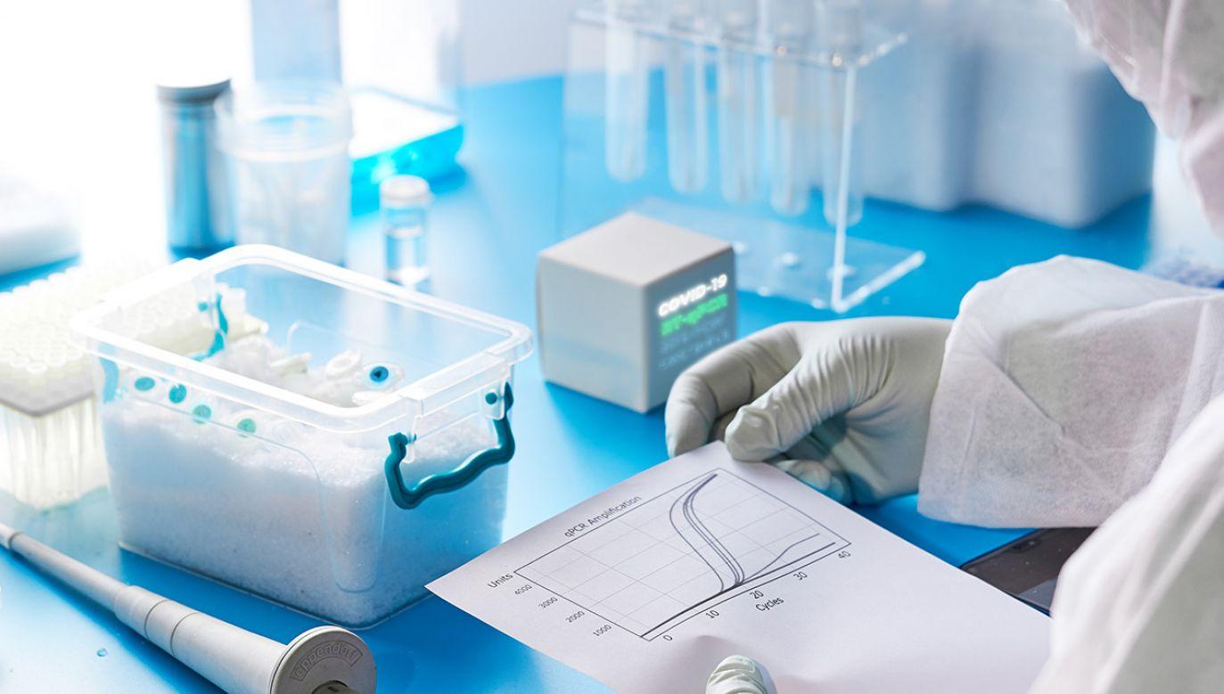 W laboratorium na Śląsku wykryto 5 wariantów koronawirusa (fot. Shutterstock/anyaivanova)