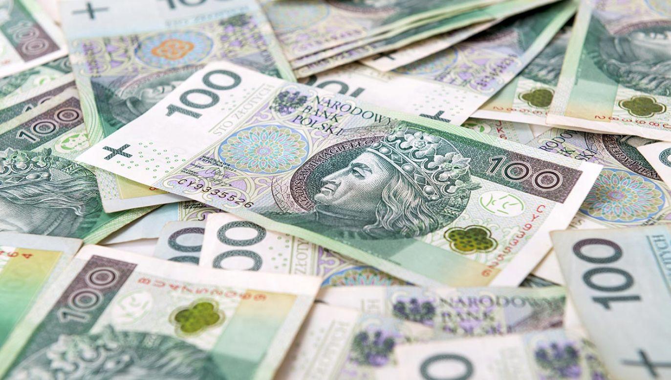 W przyszłym budżet może być większy (fot. Shutterstock/Pawel_Brzozowski)