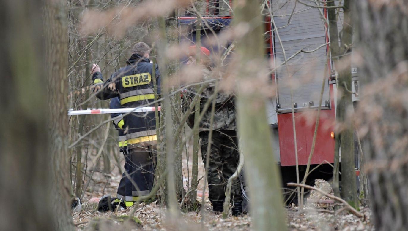 Samolot wojskowy MIG-29 rozbił się, 4 bm. w rejonie miejscowości Drgicz w województwie mazowieckim (fot. arch.PAP/Przemysław Piątkowski)