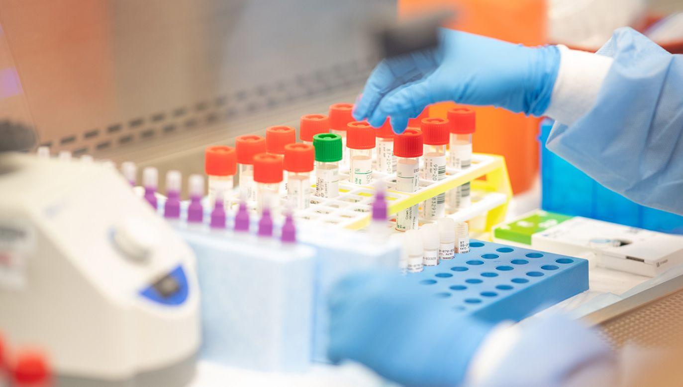 Badanie objęło wszystkich dorosłych pacjentów (od 18 lat wzwyż) z potwierdzonym laboratoryjnie COVID–19 z obu szpitali – od diagnozy po wypis lub zgon (fot. Andrew Theodorakis/Getty Images)