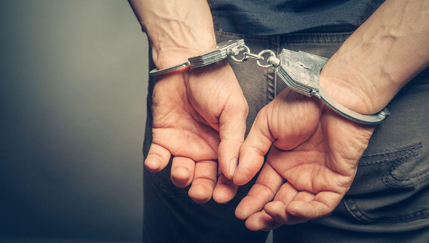 Za zarzucane mu czyny grozi do 8 lat więzienia (fot. Shutterstock/BortN66)