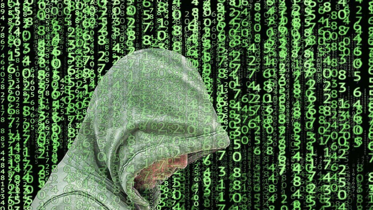 W sposób nieuprawniony ujawniono dane rejestrowe (fot. pixabay/Tumisu)