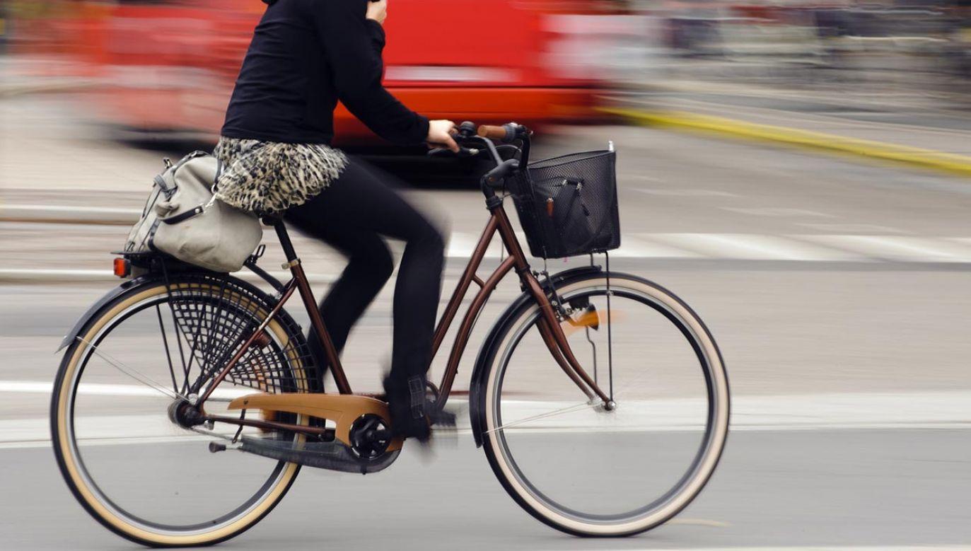 3 czerwca obchodzimy Światowy Dzień Roweru (fot. Shutterstock/Rikard Stadler)