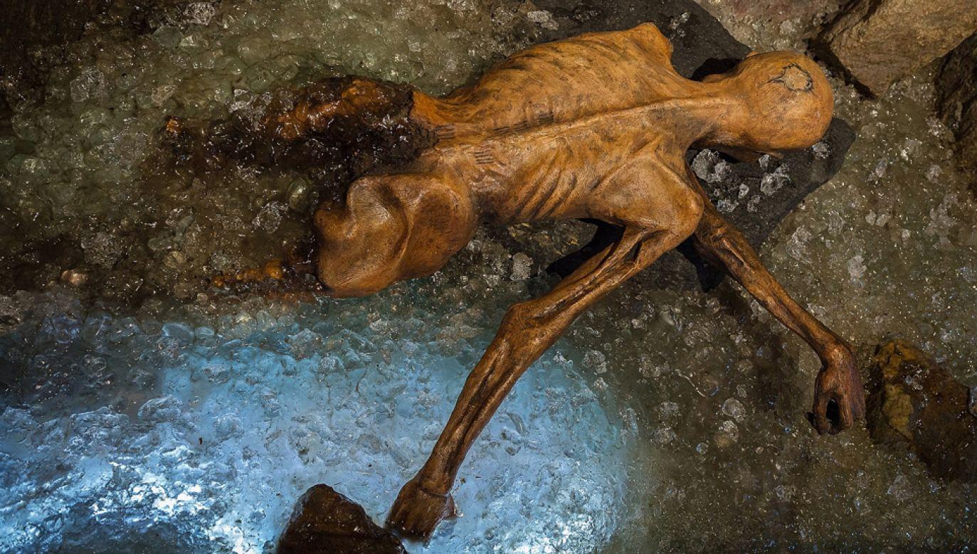 Ötzi zmarł około 5 tys. lat temu (fot. Wiki 4.0/Thilo Parg)