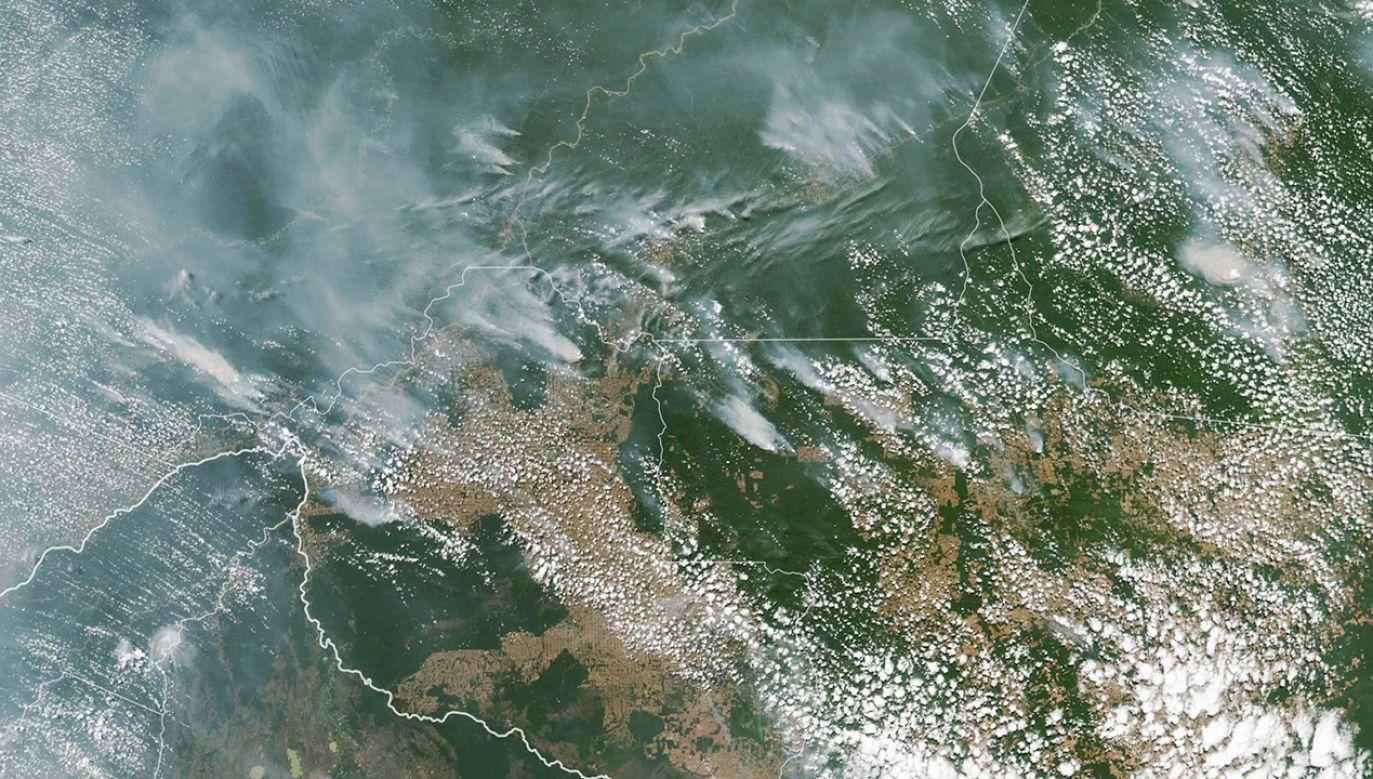 Północna Brazylia spowita jest gęstym dymem (fot. PAP/EPA/NASA EARTH OBSERVATORY)