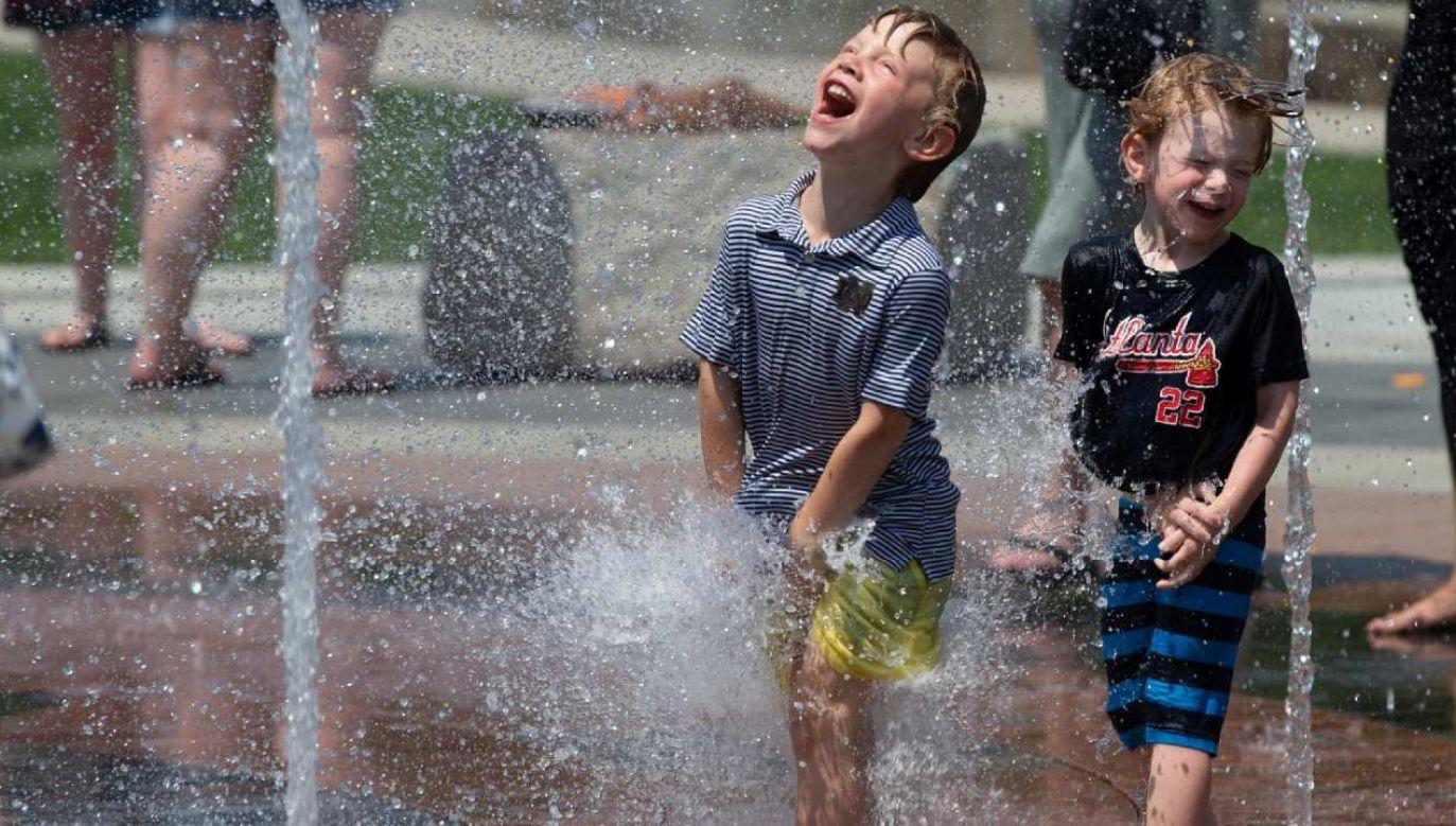 Ekstremalne upały mogą utrzymywać się przez sześć kolejnych dni (fot. PAP/EPA/CJ GUNTHER)