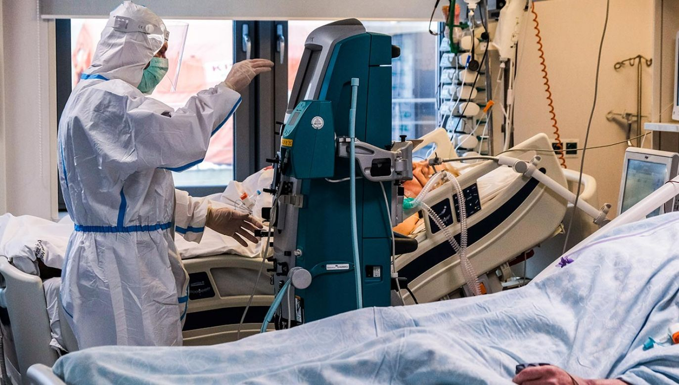 Raport o epidemii koronawirusa w Polsce (fot. Omar Marques/SOPA Images/LightRocket via Getty Images)