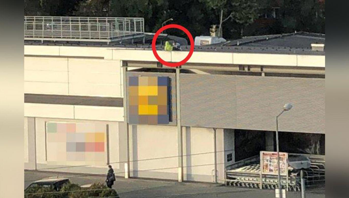 Okazało się, że dzieci, aby dostać się na dach budynku musiały wspiąć się po konstrukcji schodów umieszczonych przy ścianie sklepu (fot. Policja)