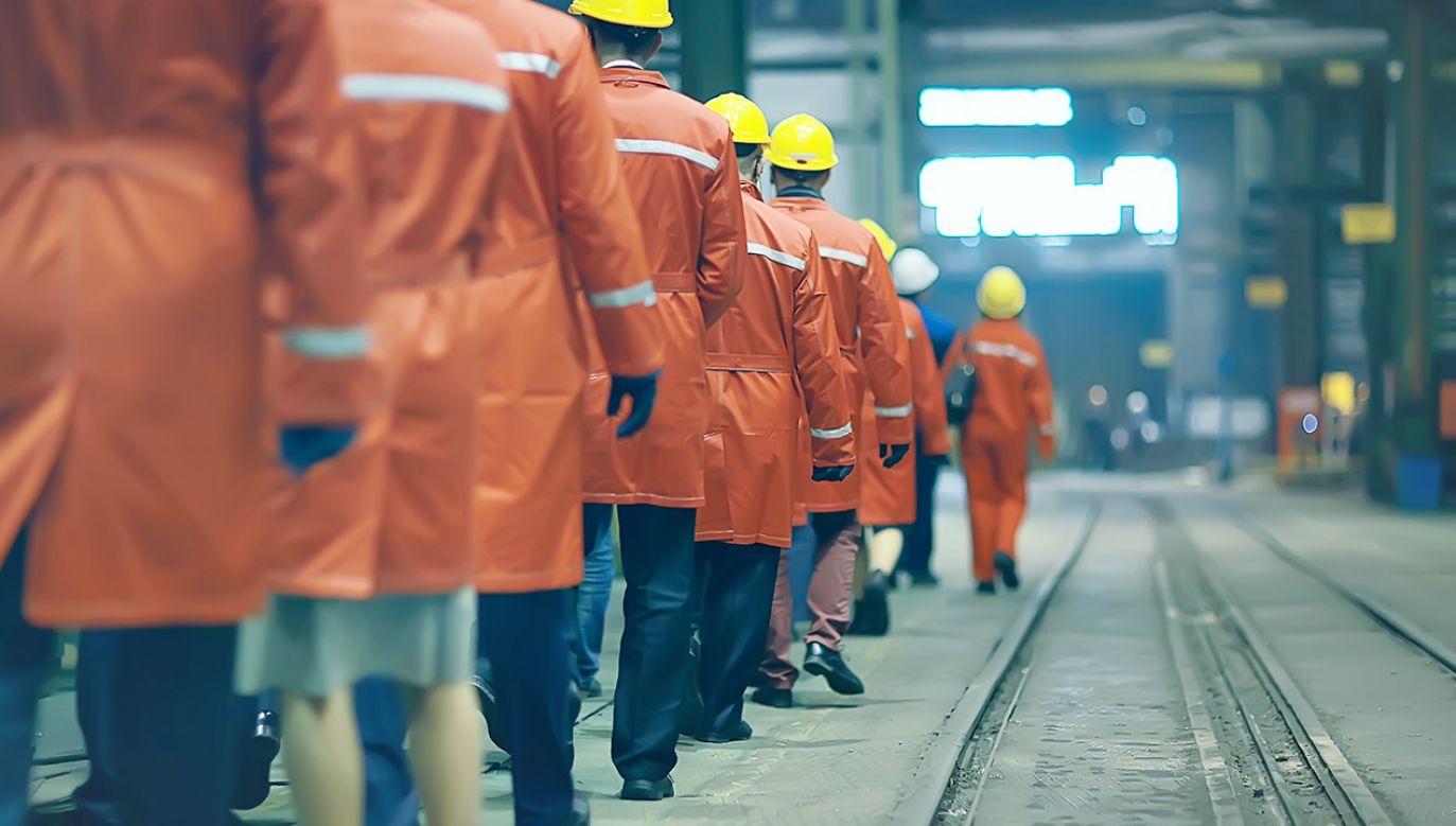 """""""Dane wskazują, że rynek pracy był stabilny"""" (fot. Shutterstock/Kichigin)"""