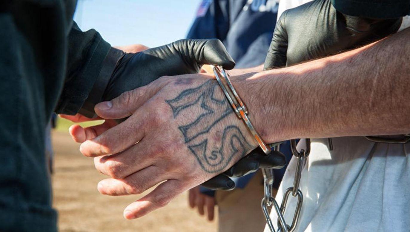 Wielu nielegalnych imigrantów działa w gangach i innych organizacjach przestępczych (fot. ICE)