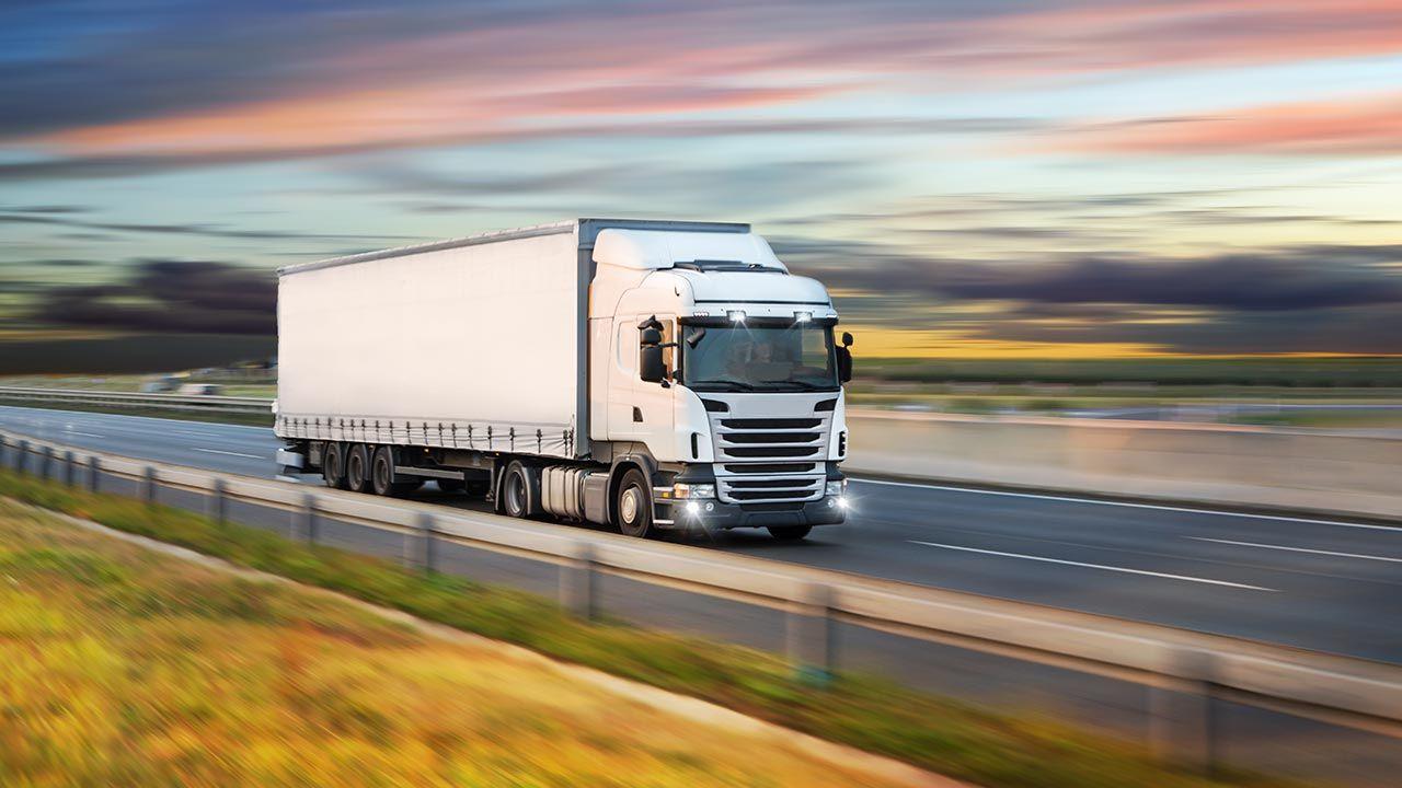 Niemiecki import wzrósł w pierwszym kwartale o 14,7 proc.  (fot. Shutterstock/Lukas Gojda)