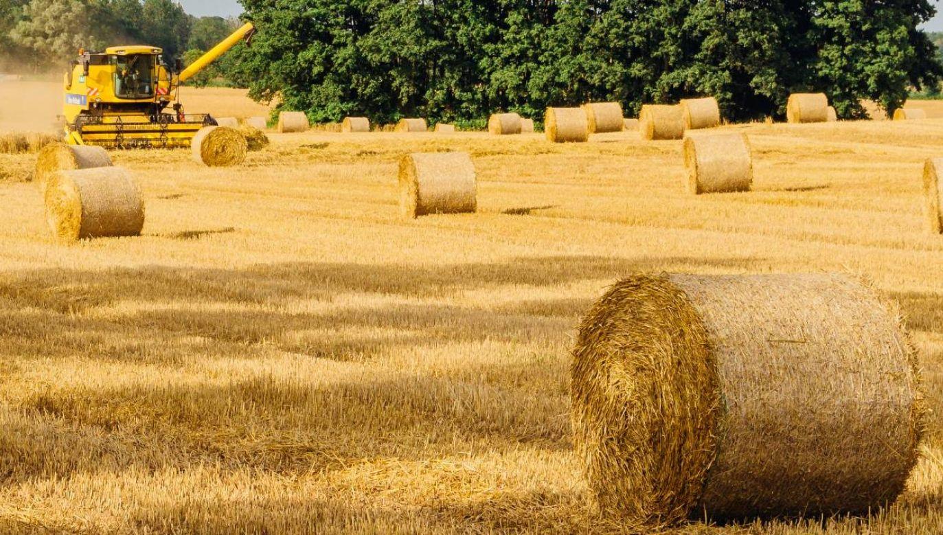 Według statystyk KRUS w zeszłym roku rolnicy zgłosili niemal 11 tys. wypadków przy pracy (fot.Pexels)