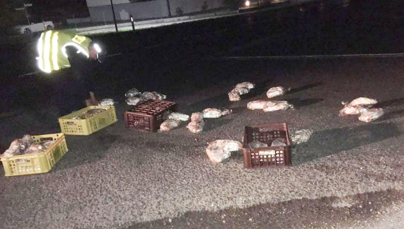 W sumie na drodze leżało 80 bochenków i 8 skrzynek (fot. Komenda Powiatowa Policji w Żninie)