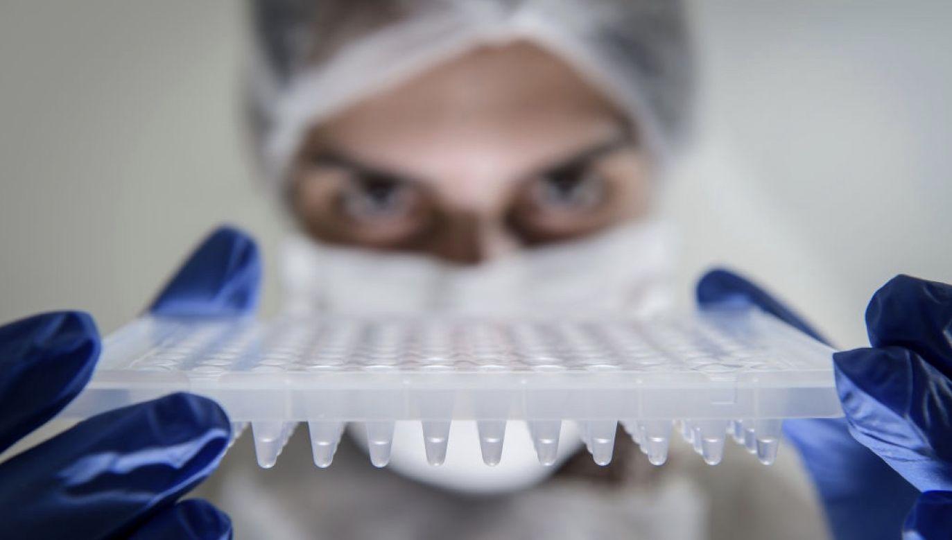 Brazylijski urząd ds. zdrowia nie podał dalszych szczegółów, powołując się na tajemnicę lekarską (fot. Pedro Vilela/Getty Images)