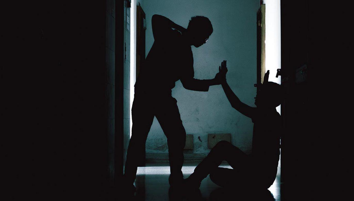 Okradli swoją ofiarę nawet z chusteczek (fot. Shutterstock/neotemlpars)