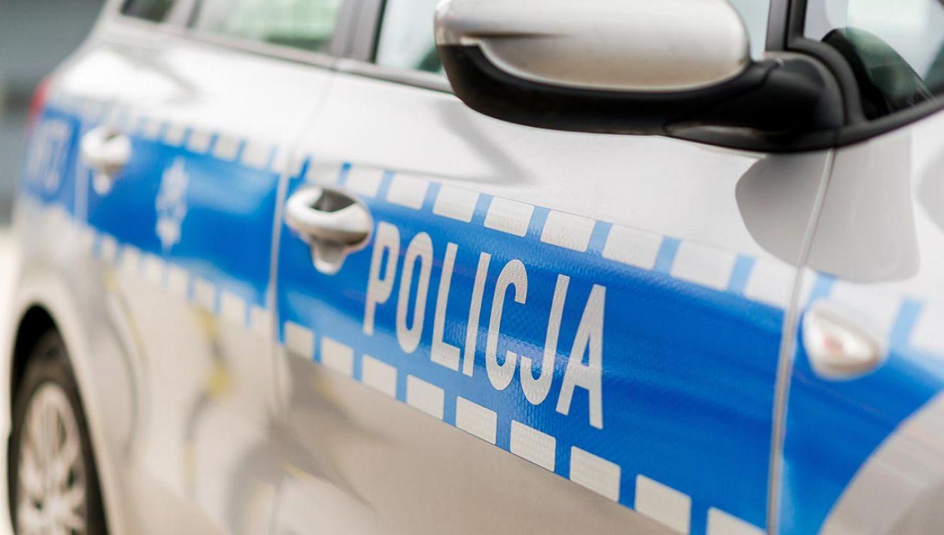 Policjanci z Gdańska cały czas pracują nad zatrzymaniem wspólników nastolatka (fot. Shutterstock/Bart Bourdon)