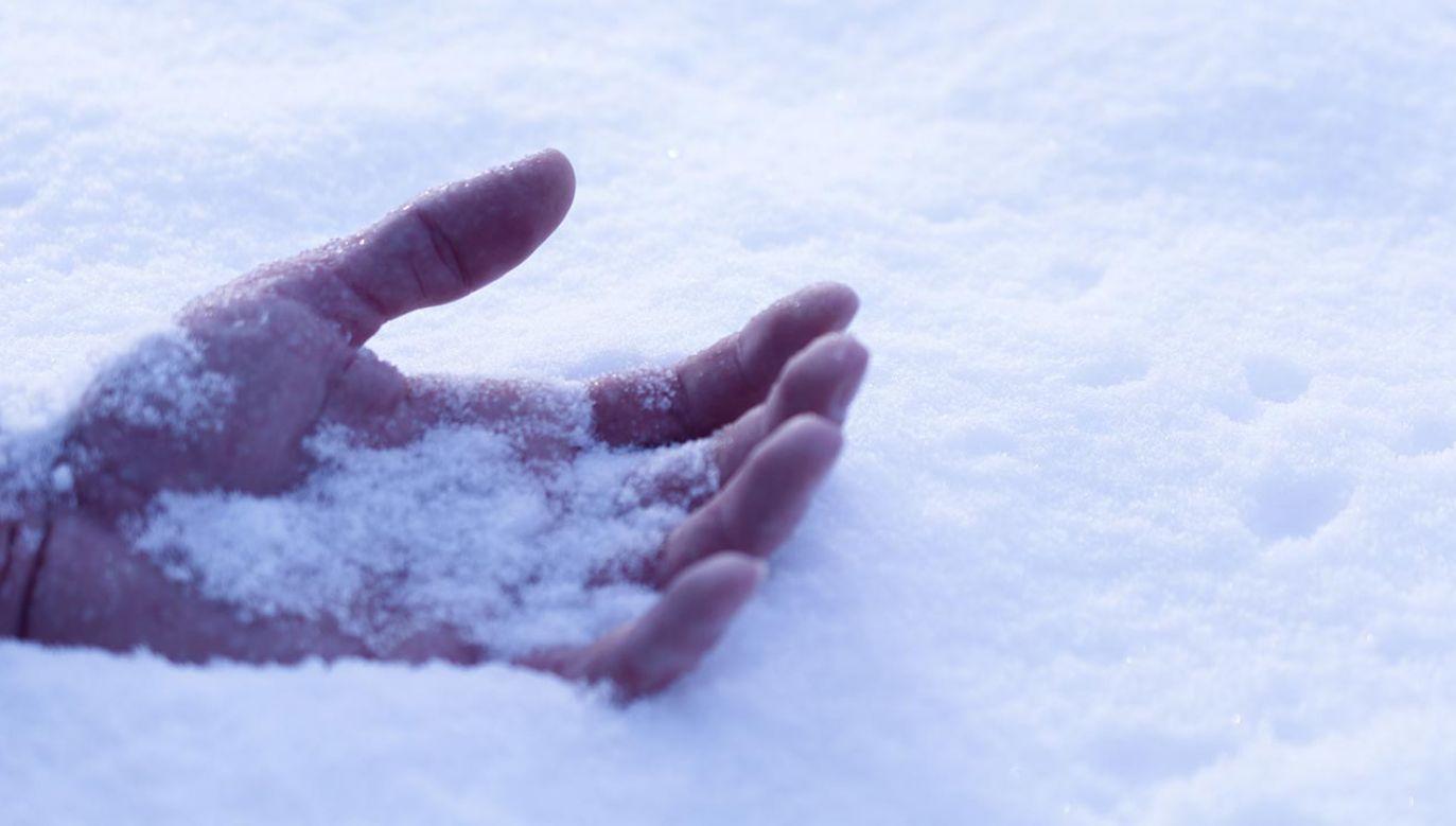 Tej nocy temperatura spadła kilka stopni poniżej zera  (fot. Shutterstock/OneSideProFoto)