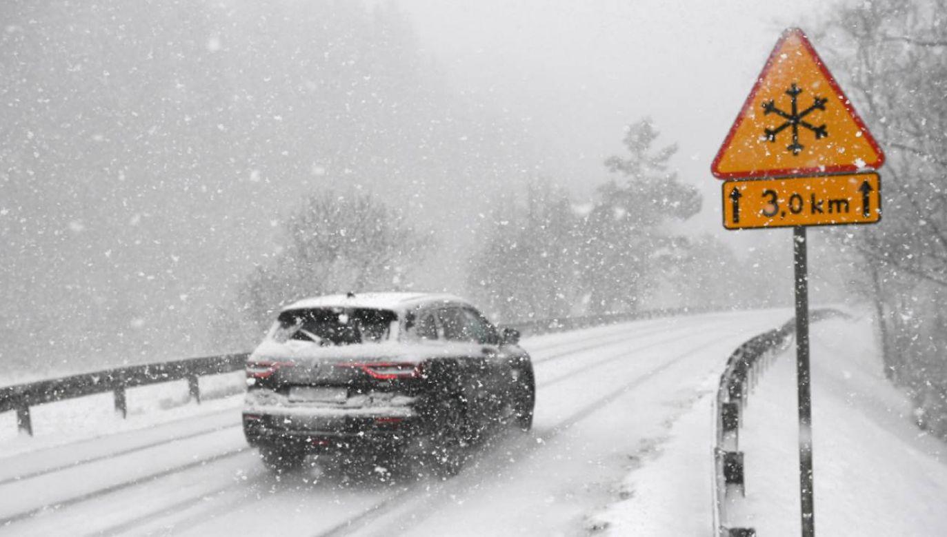 Zima jeszcze nie odpuszcza (fot. PAP/Darek Delmanowicz)