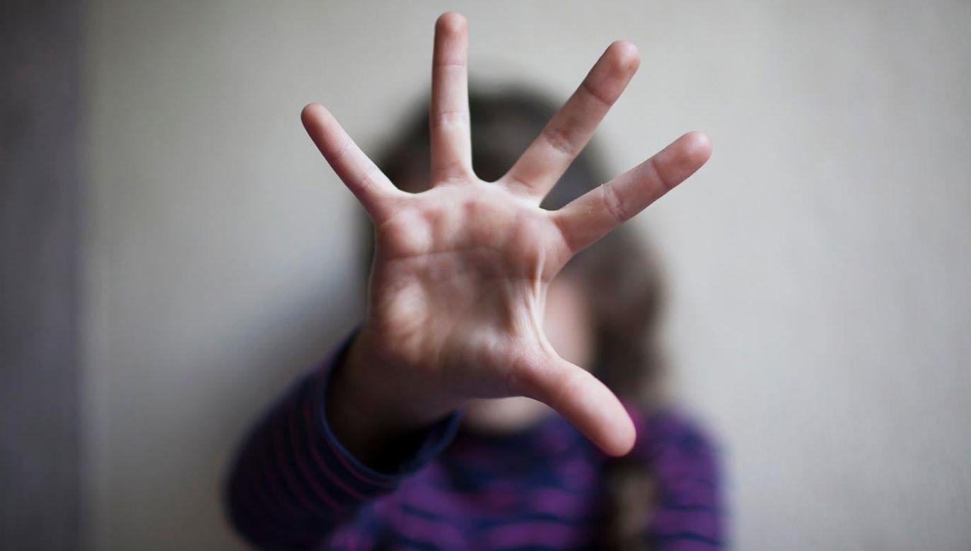 Troje dzieci podejrzanych trafiło do placówki opiekuńczej (fot. Shutterstock/snob)
