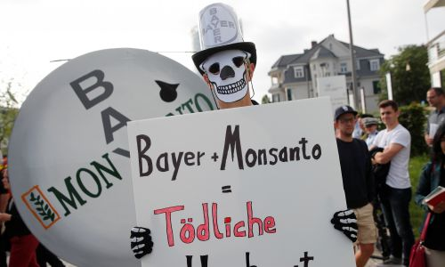"""Demonstracja przeciwko fuzji niemieckiego producenta farmaceutycznego i chemicznego Bayer z amerykańskim Monsanto, wytwarzającym agroprodukty z glifosatem i zmodyfikowane genetycznie nasiona. Napis na plakacie brzmi: """"Bayer + Monsanto = zabójcze małżeństwo"""". Doroczne zgromadzenie akcjonariuszy Bayer w Bonn, Niemcy, 25 maja 2018 roku. Fot. REUTERS / Wolfgang Rattay"""