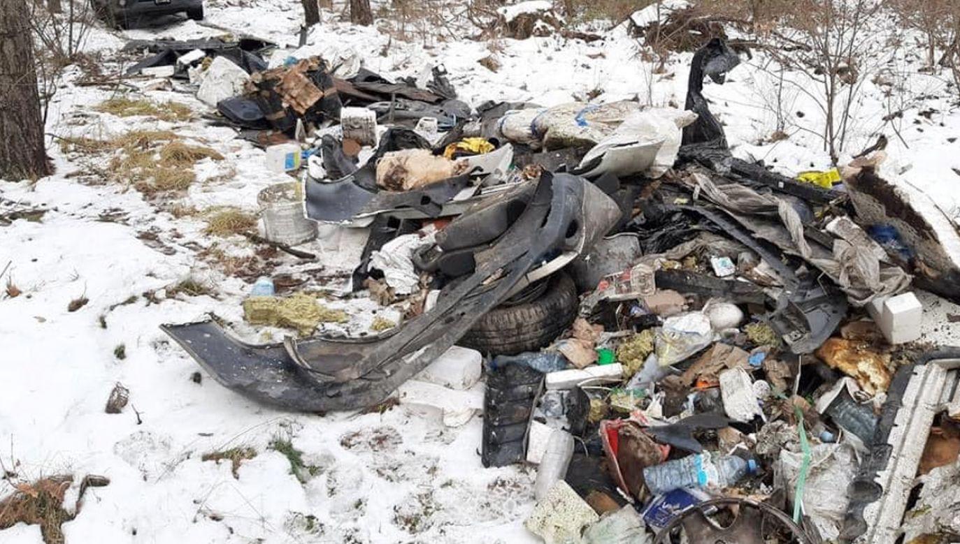Na sprzątanie lasów, co roku przeznaczane jest 20 mln zł (fot. Lasy Państwowe)