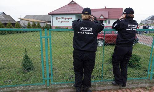 Obrońcy praw zwierząt przed meczetem w Bohonikach w 2013 roku. Polscy wyznawcy islamu rozpoczęli obchody Święta Ofiarowania, czyli Kurban Bajram. To jedna z dwóch najważniejszych w roku muzułmańskich uroczystości religijnych, czas modlitw i spotkań z bliskimi. Z tej okazji w Bohonikach ma mieć miejsce rytualny ubój kilku baranków i w związku z tym przed meczetem w Bohonikach protestowali obrońcy zwierząt. Argumentowali że ubój rytualny jest w Polsce zakazany. Fot. PAP/Artur Reszko