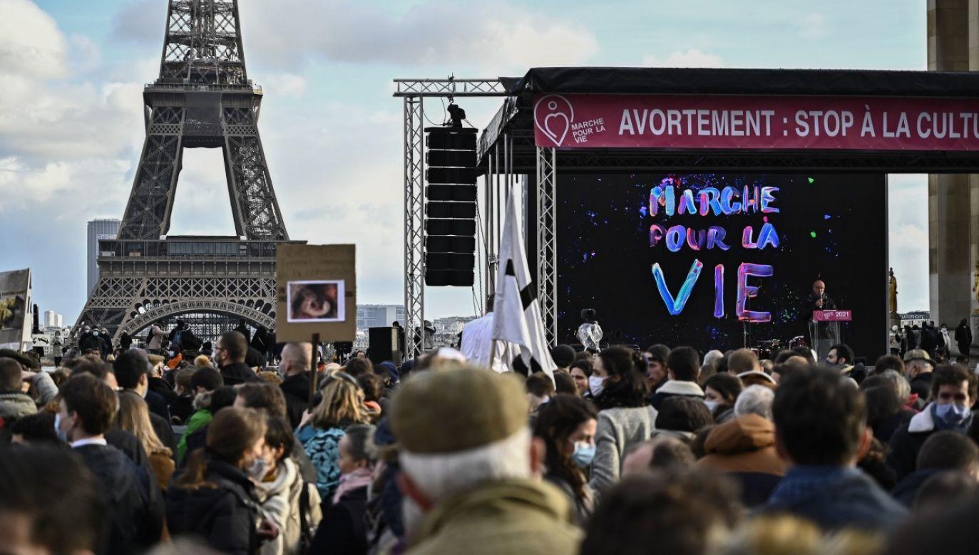 Kilkatysiecy osób protestowało w niedzielę przeciwko aborcji i ustawie bioetycznej (fot. Julien Mattia/Anadolu Agency via Getty Images)