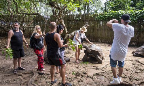 Kuszą egzotyczne zwierzęta, takie jak wielkie żółwie na wyspie Changuu. Fot. Andrew Aitchison / In pictures via Getty Images