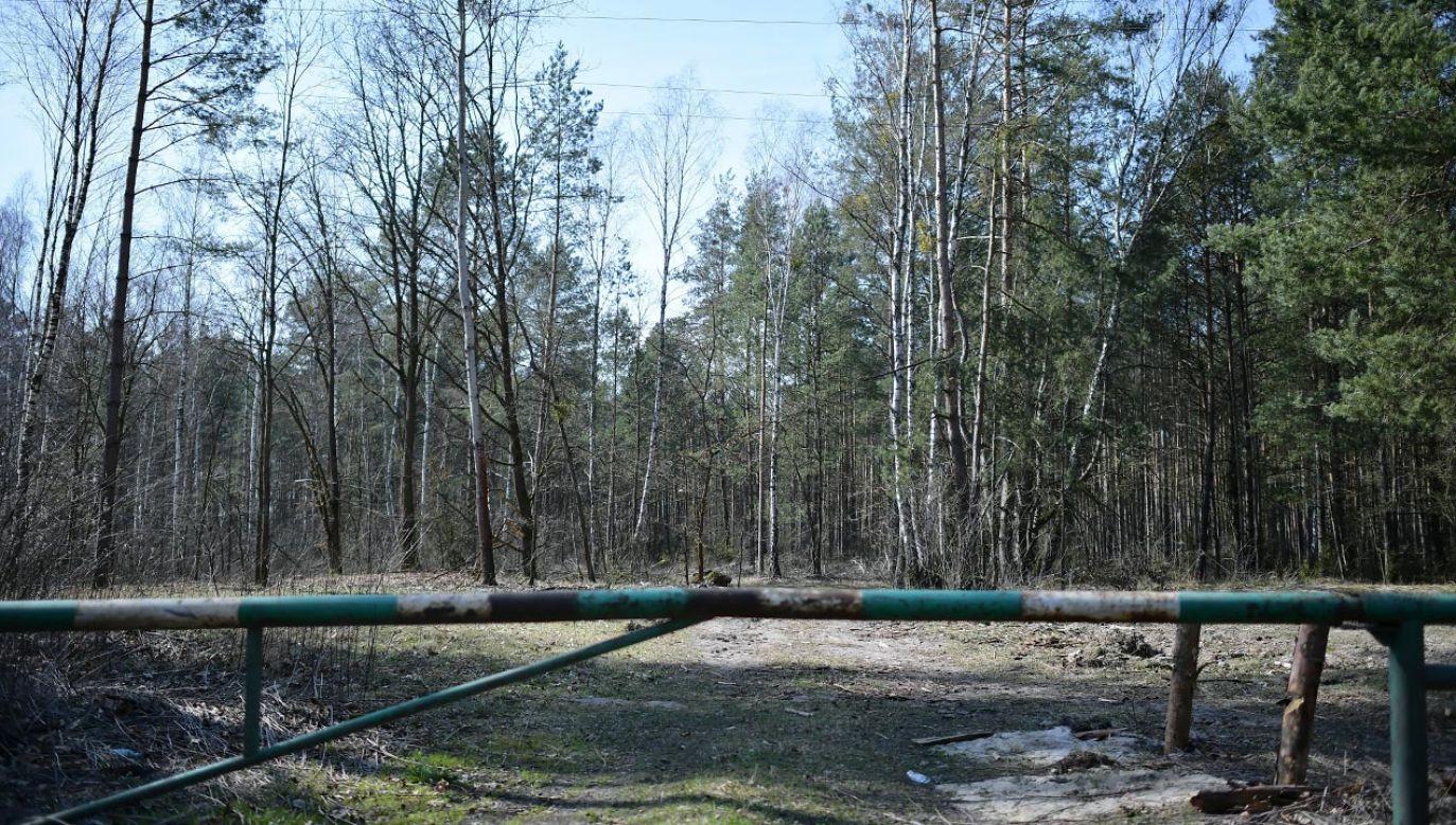 Chodzi o budowę na 20-hektarowym terenie dawnej bazy wojskowej w Lesie Bemowskim (fot. PAP/Marcin Obara)