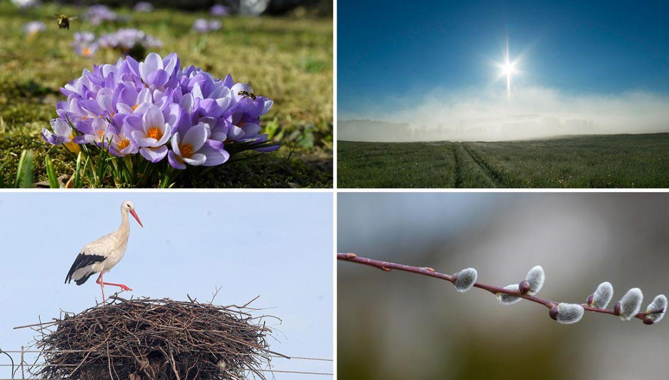 Prognoza pogody – marzec 2021 (fot. PAP/Marcin Bielecki; Forum/Andrzej Sidor;PAP/Artur Reszko; Forum/Bartlomiej Kudowicz)