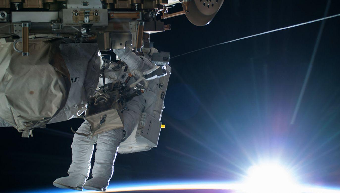Jeszcze po 10 dniach od powrotu na Ziemię utrzymywały się zmiany w ekspresji około 1000 genów (fot. REUTERS/NASA/Handout)