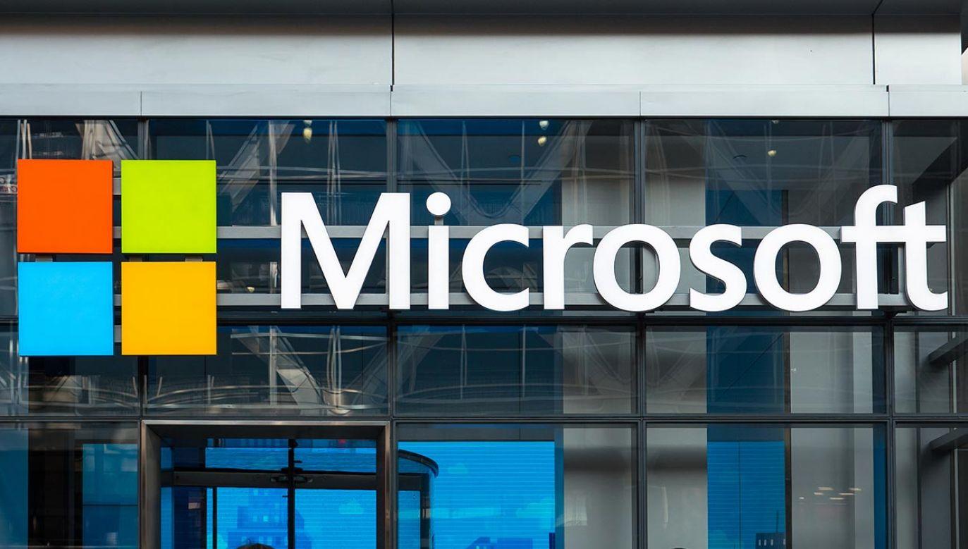 Microsoft (fot. Shutterstock/pio3)