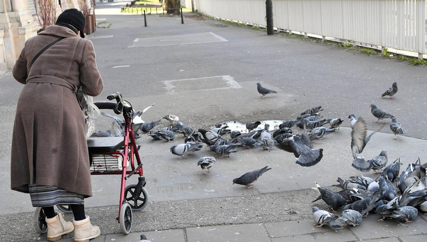 Niestety nie odzyskała już pieniędzy (fot. PAP/Piotr Nowak)