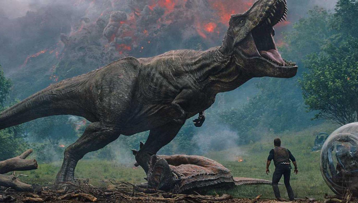 """Filmowy Park Jurajski nie okazał się być sukcesem (fot. kadr z filmu """"Jurassic World: Upadłe królestwo"""", Universal Pictures/mat.pras.)"""