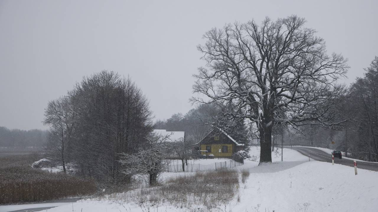 Czy czeka nas powtórka mroźnej zimy sprzed roku? (fot.Forum/Andrzej Sidor)