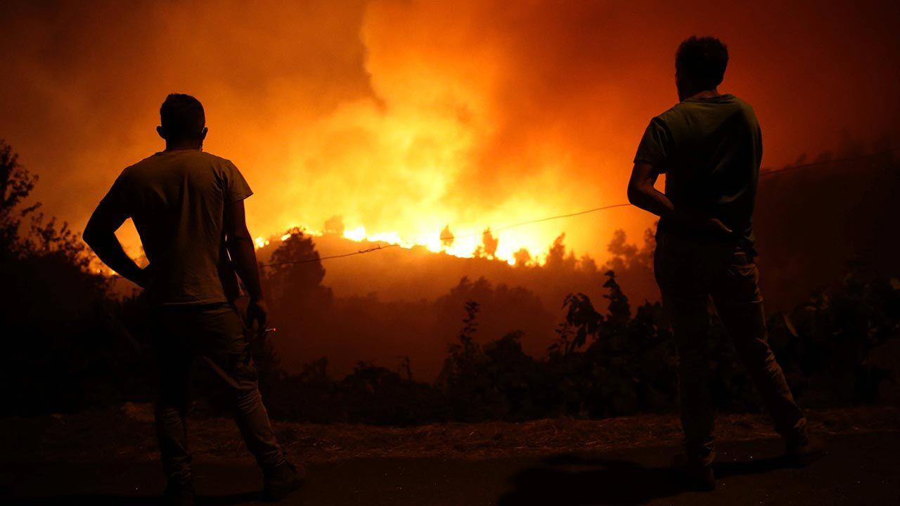 Zatrzymano podejrzanego o wywołanie pożarów w Portugalii (fot. PAP/EPA/NUNO ANDRÉ FERREIRA)