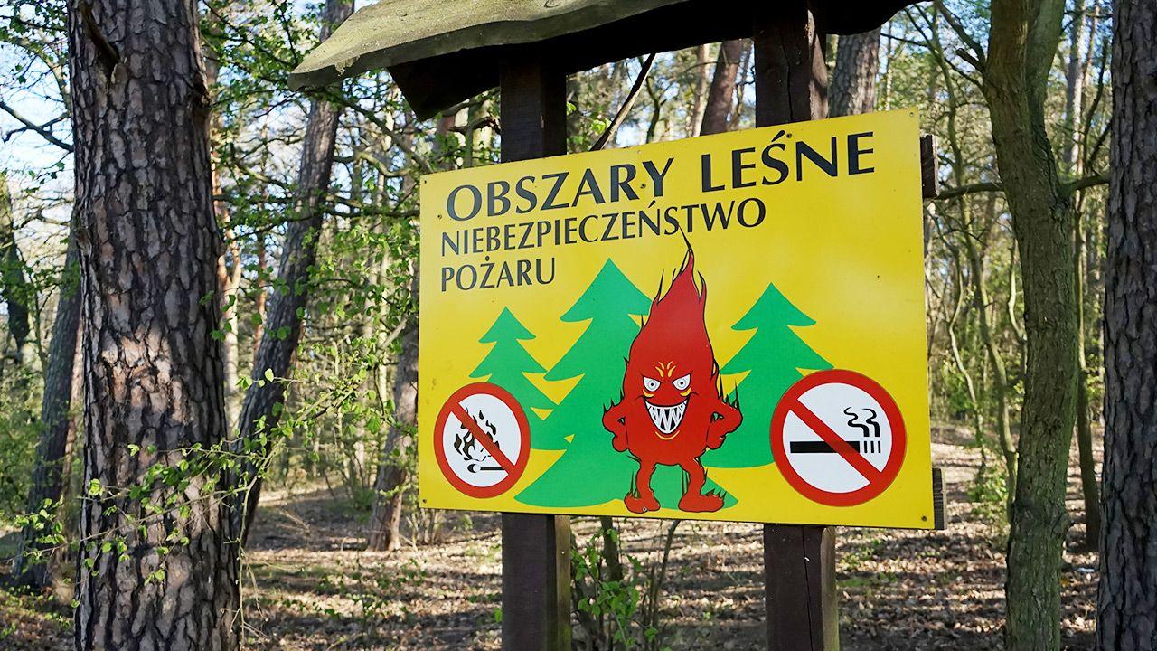 Zagrożenie pożarowe w lasach (fot. PAP/Marcin Bielecki)
