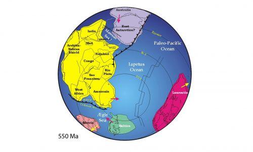 Pangeę otaczał wszechocean Panthalassa, a od wschodu rozcinał ją mniejszy zbiornik – Ocean Tetydy. Uformowała się w karbonie, na skutek zamknięcia się paleozoicznego oceanu Reik oraz kolizji kontynentów Laurosji i Gondwany. W okresie jurajskim rozerwanie się Pangei na dwie części – północną Laurazję i południową, odtworzoną Gondwanę, spowodowało powstanie centralnego Oceanu Atlantyckiego. Lądy uległy dalszemu podziałowi, tworząc obecne oblicze Ziemi z 7 kontynentami. Fot. Wikimedia Commons, Domena publiczna