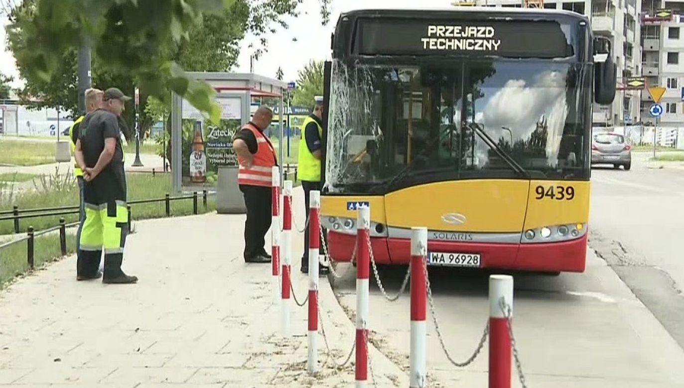 Kierowca został zatrzymany (fot. TVP Info)