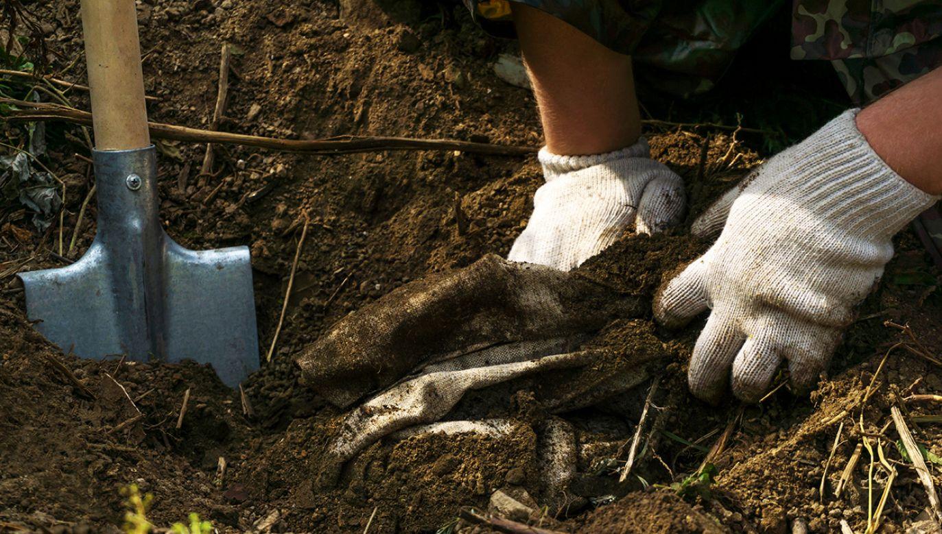 Jakub Ch. po śmierci matki zakopał jej zwłoki w przydomowym ogrodzie (fot. Shutterstock/Evgeny Haritonov)