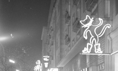 """Widok Alej Jerozolimskich od ulicy Marszałkowskiej w kierunku ulicy Kruczej w nocy. Widoczni przechodnie z parasolami oraz włączone neony, m.in. neon sklepu """"Chinka"""". 1966 r. Fot. NAC/Archiwum Fotograficzne Zbyszka Siemaszki, sygn. 51-310-1"""