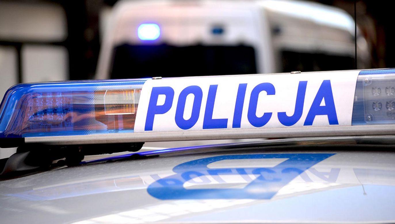 Podlaska policja zatrzymała trzy osoby przewożące migrantów (fot. SHutterstock/DarSzach)